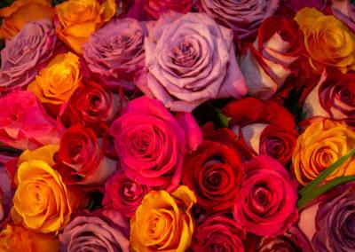 Ferrari Fleurs 1975 bouquet roses